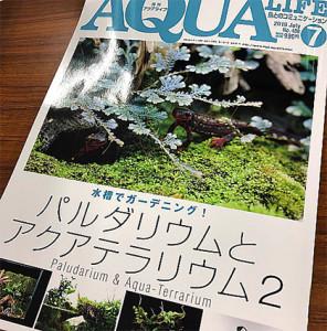 Aqua Life 1979 - 2019 4