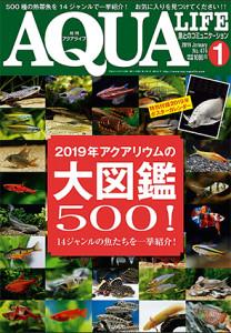 Aqua Life 1979 - 2019 7