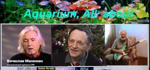 aquarium-all-about-2019
