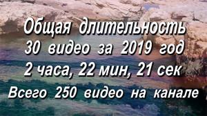 All videos 2019 decermber 1