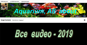 Videochannel 2019 - 249 video