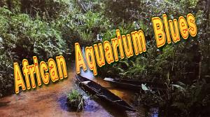 Afr. Aquarium Blues