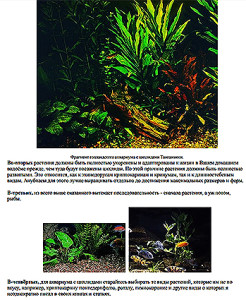 Cichlids and waterplants 2020 1