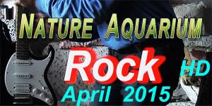 NA rock 2015 film April re