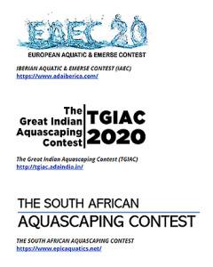 IAPLC 2020 e