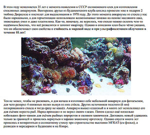 Aquarium 2020