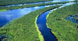 Amano freshwater biotop 2020 1
