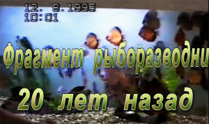 Cyprus-fishery 4 ed