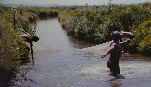 Hanka Lefu river near Khanka lake