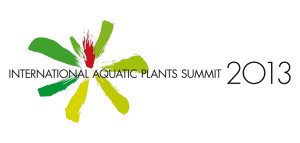 AMano summit 2013 1-1 ed