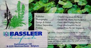 Bassleer 1995 2020