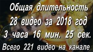 Обзор Ютьюба 2018-2021