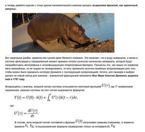 аквариум и математика 2021 2