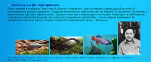 Aquariumist 2 (2)