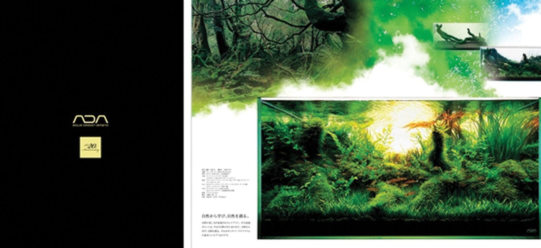 ada-20-th-anniversary-2012.jpg