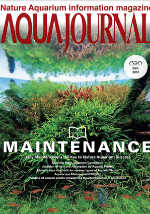 aj-digital-sept-2012-cover.jpg