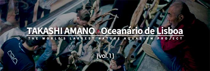 amano-lisbon-2015-video-1.jpg
