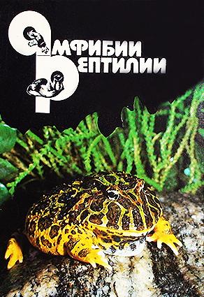 amohibia-reptiles-25-2014.jpg