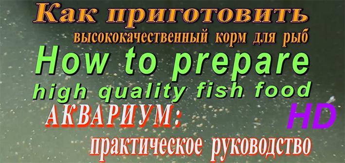 aq-foods.jpg