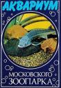 aqmoszoo-19851.jpg