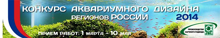aqua-comp-russia-2014-1.jpg