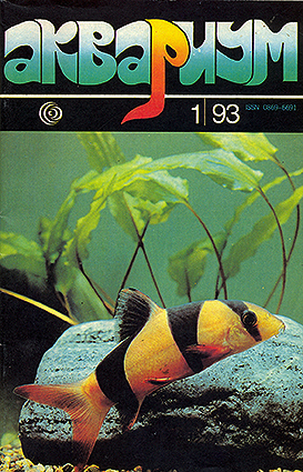 aquarium-01-1993.jpg