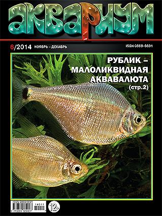 aquarium-6-2014.jpg