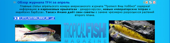 aquariumistru-_podcasts-2012.jpg