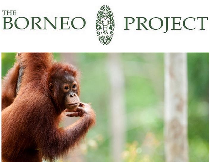 borneo-project.jpg