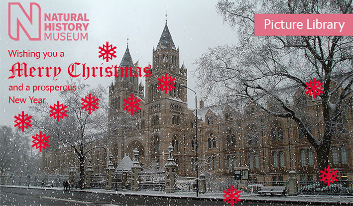 british-museum-christmas-card-2013.jpg