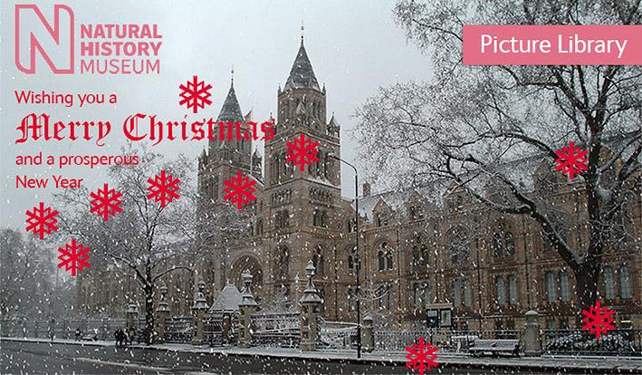 british-museum-christmas-card-2013.jpg