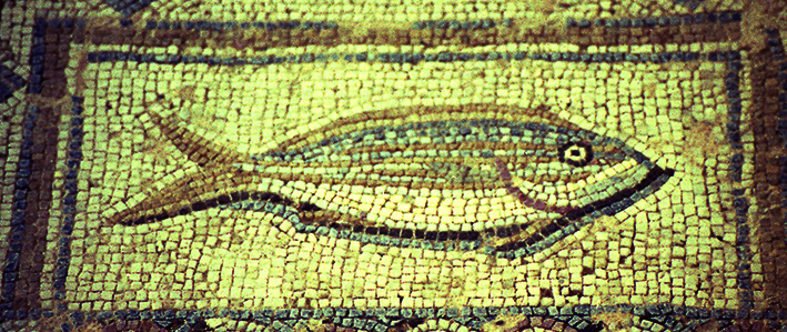 cyprus-mozaik-smaris.jpg