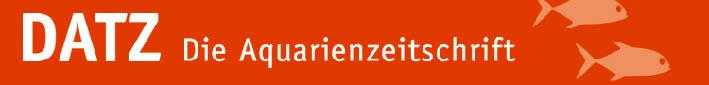 datz-logo-startseite.jpg