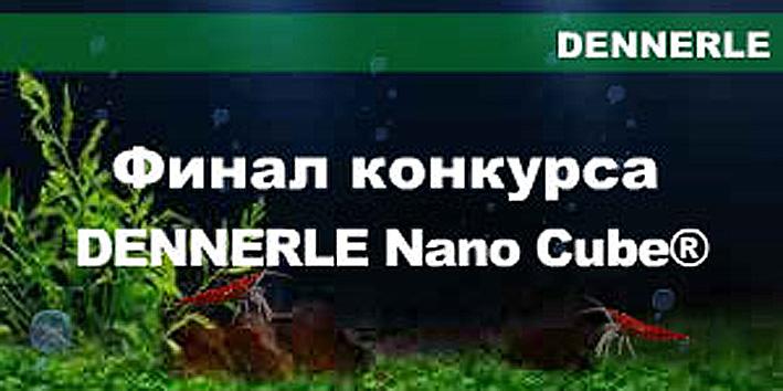 denerle-nano-cube.jpg