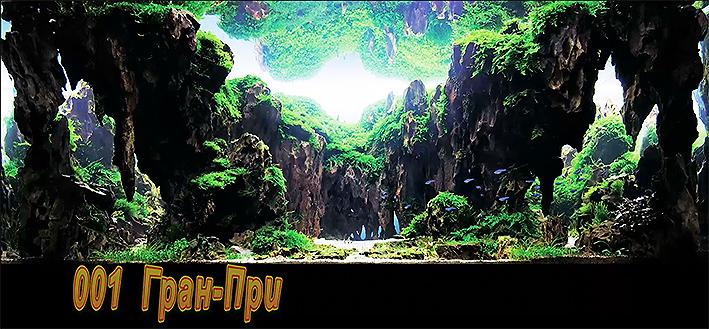 iaplc-2014-top-27.jpg