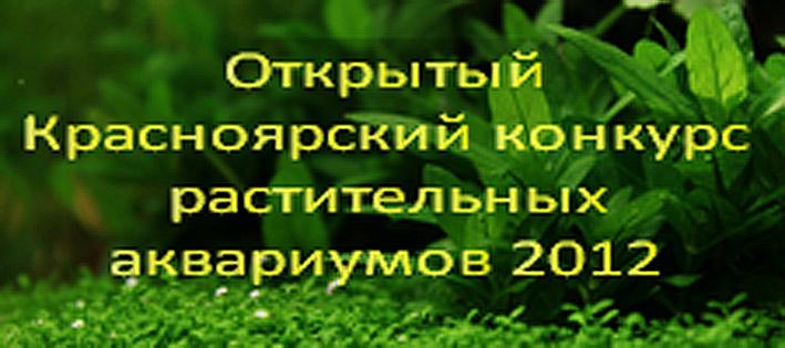 krasnoyarsk-2012re.jpg