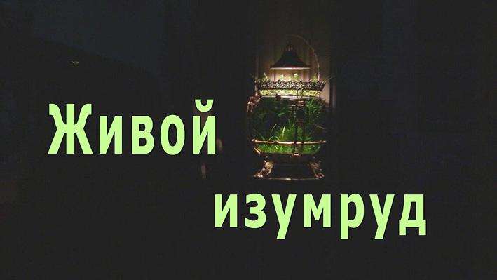 live-emerald.jpg