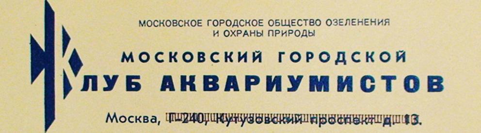 mgkat-letter-head.jpg