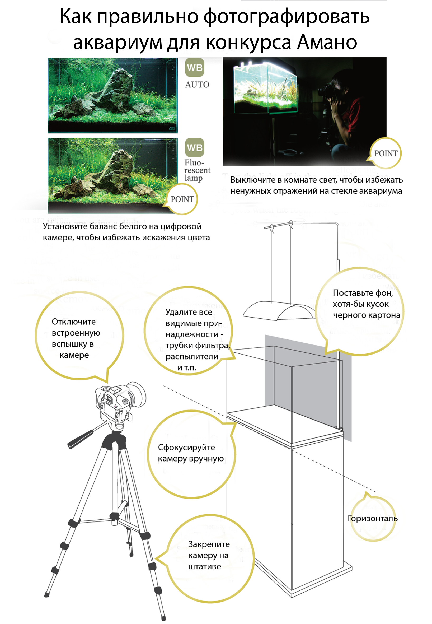 photography-how-to.jpg