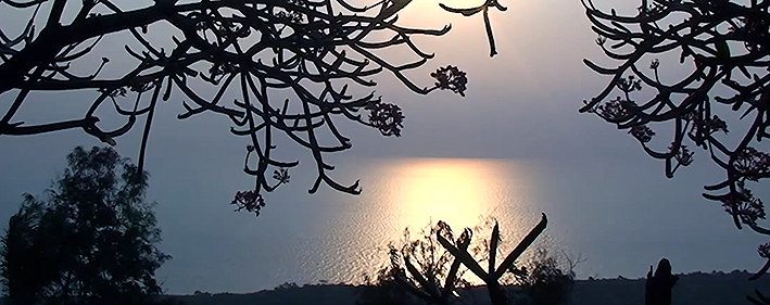pierre-brichard-tanganyika-view-re.jpg