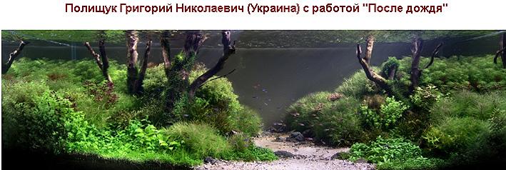 roaplc-2012-tanks-1.jpg