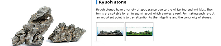 ryuoh-stone-page.jpg