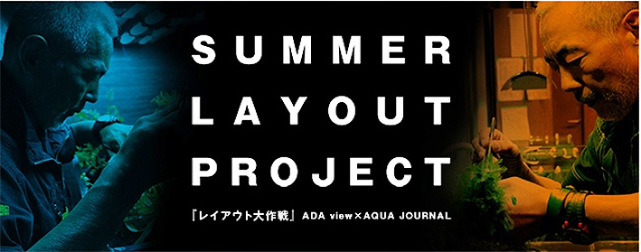 summer-layout-project.jpg