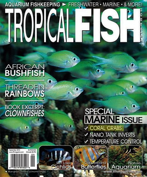 tfh-september-2013-cover.jpg