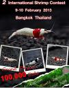 thailands-shrimps-contest-2013.jpg