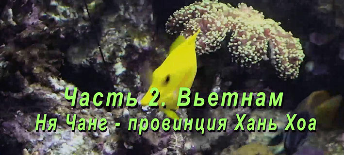 vietnam-stepanov-1.jpg